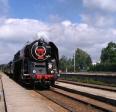 Aktuality - Historický vlak byl na Vysočině nadšeně vítán