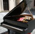 Aktuality - Charitativní koncert Petra Dvorského byl zrušen, ale…