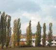 Aktuality - V Bystřici nad Pernštejnem plánují během příštích tří let radikální zásah do městské zeleně