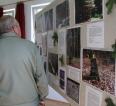Aktuality - Lesnická výstava aneb pomníčky-kříže-hraniční kameny