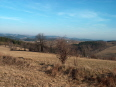 Aktuality - Chráněná krajinná oblast Žďárské vrchy bude slavit čtyřicítku