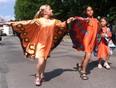 Aktuality - Každoroční Sbírka motýlů právě začala