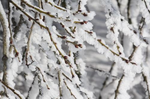 Aktuality - Zima ještě neskončila