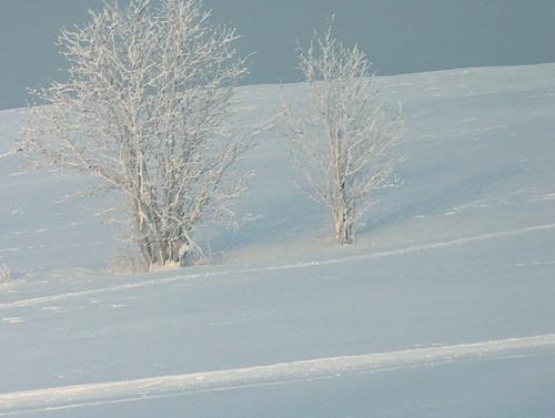 Aktuality - Kvůli administrativnímu pochybení visí otazník nad úpravou lyžařských tratí