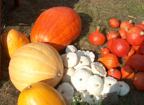 Bystřice i Nové Město začínají s tradicí farmářských trhů