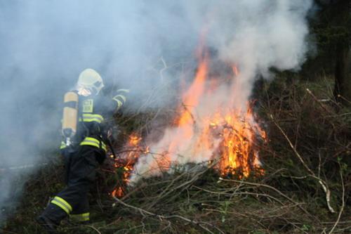 Aktuality - Požár v lese Ochoze prověřil dobrovolné hasiče