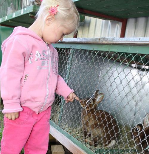 Aktuality - Na výstavách chovatelů nikdy nechybí dětský pláč