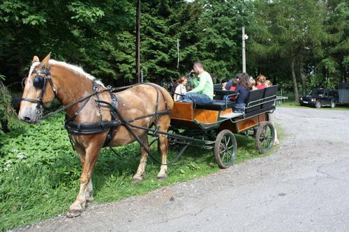 Aktuality - Hlavním motivem letošního Dětského dne v Rokytně byl kůň